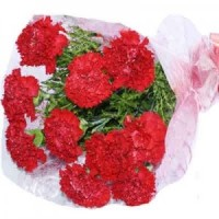 Carnations Hand Bunch