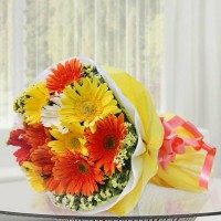 Mix Gerbera Bunch